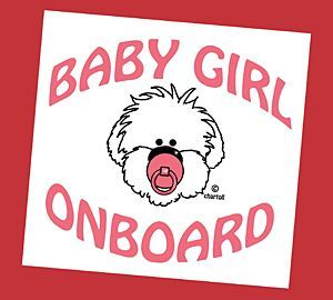 Sticker autoruit Baby Girl onboard