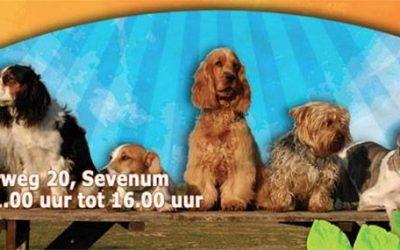 Hondenfestijn bij Dierencentrum Sevenum
