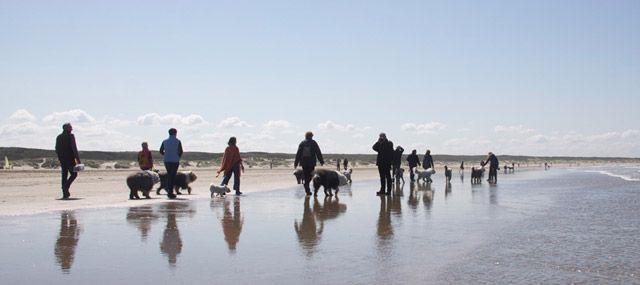 Verslag wandeling regio Noord-West op 13 mei 2012