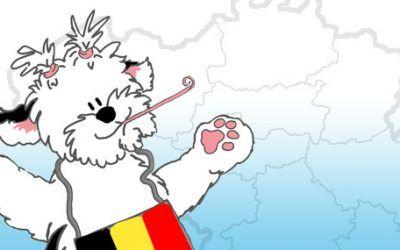 Vanaf nu ook de Belgische shows op Onze OES